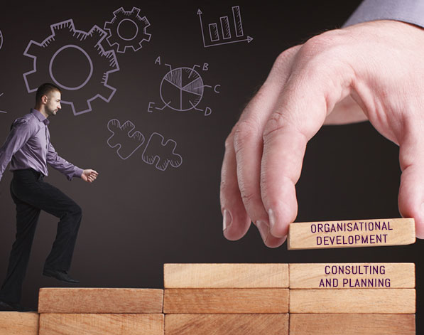 Organisational Development Consulting & Planning